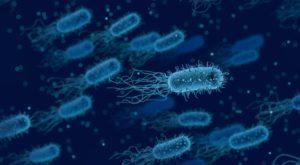 Contaminations, comment les éviter?